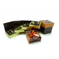 Boite chocolats assortis cubo luxe 420g
